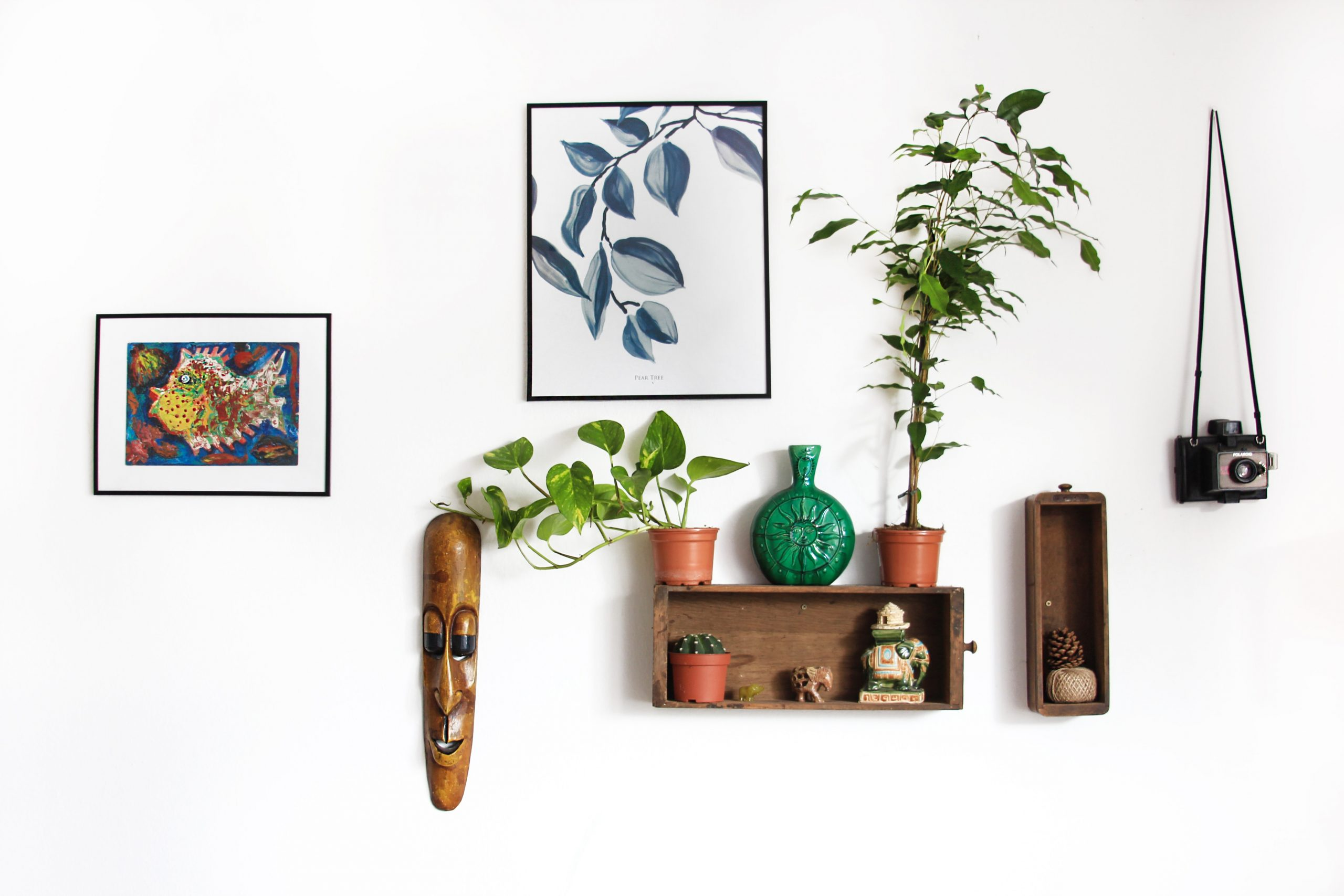 White wall with art and plants on a shelve